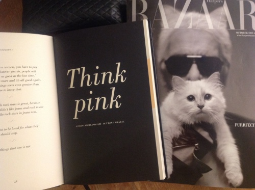 Think pink -  but don't wear it. Karl and Choupette.