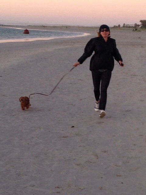 My sister's dog, Milo, taking me for a run on a recent holiday in Cape Town.